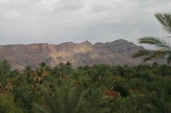 Séjours palmeraie maroc